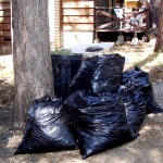 If inspectors see leaf bags or piles, they'll know that you're working on abatement and won't cite you
