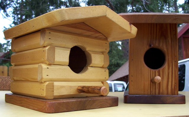 how to build a blue jay birdhouse