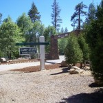 Idyllwild Pines Camp, which houses the dog park, is making some changes