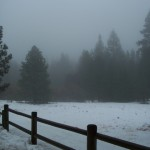 Idyllwild is the perfect locale for a zombie movie