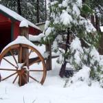 Surprise wagon wheel