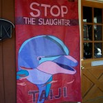 Taylor hopes to pressure Taiji from killing 20,000 dolphins