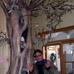 Darwin, an Idyllwild sculptor, stands next to his interior tree