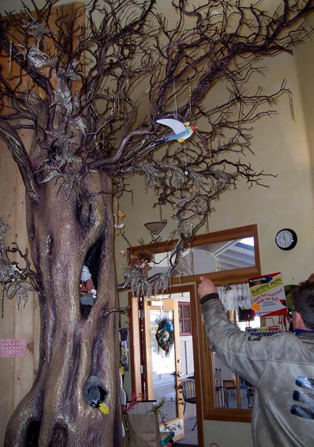 Darwin S Interior Magic Tree Idyllwild Me