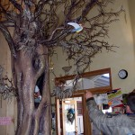Darwin points to a large tree that he built for an Idyllwild toy shop