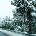 flag sign road