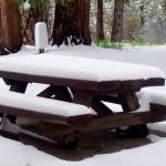 surprise picnic table
